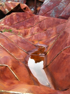 Rust Puddle I