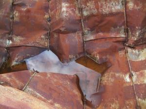 Rust Puddle II