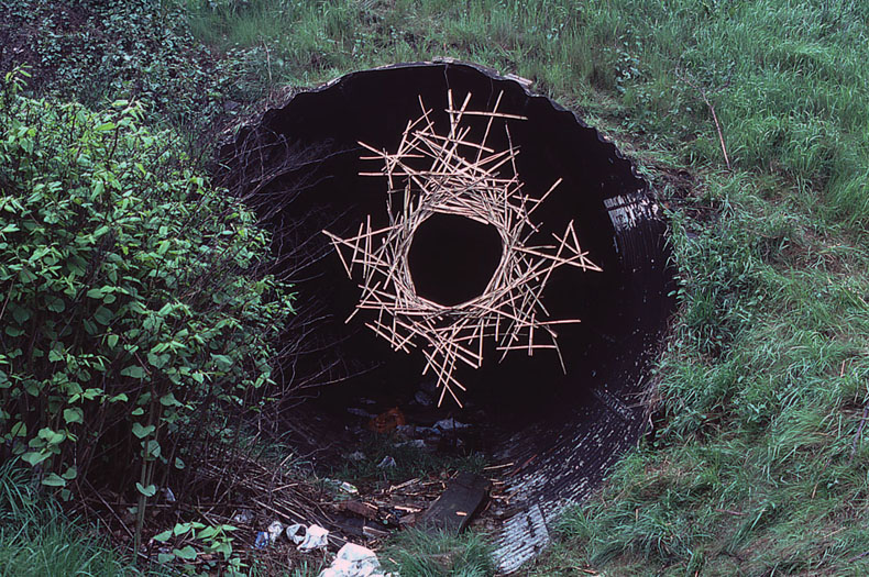 andy goldsworthys art essay Andy goldsworthy, john wolsely and rosalie gascoigne essay andy goldsworthy-practice-andy goldsworthy is a land artist john wolsely and rosalie gascoigne.