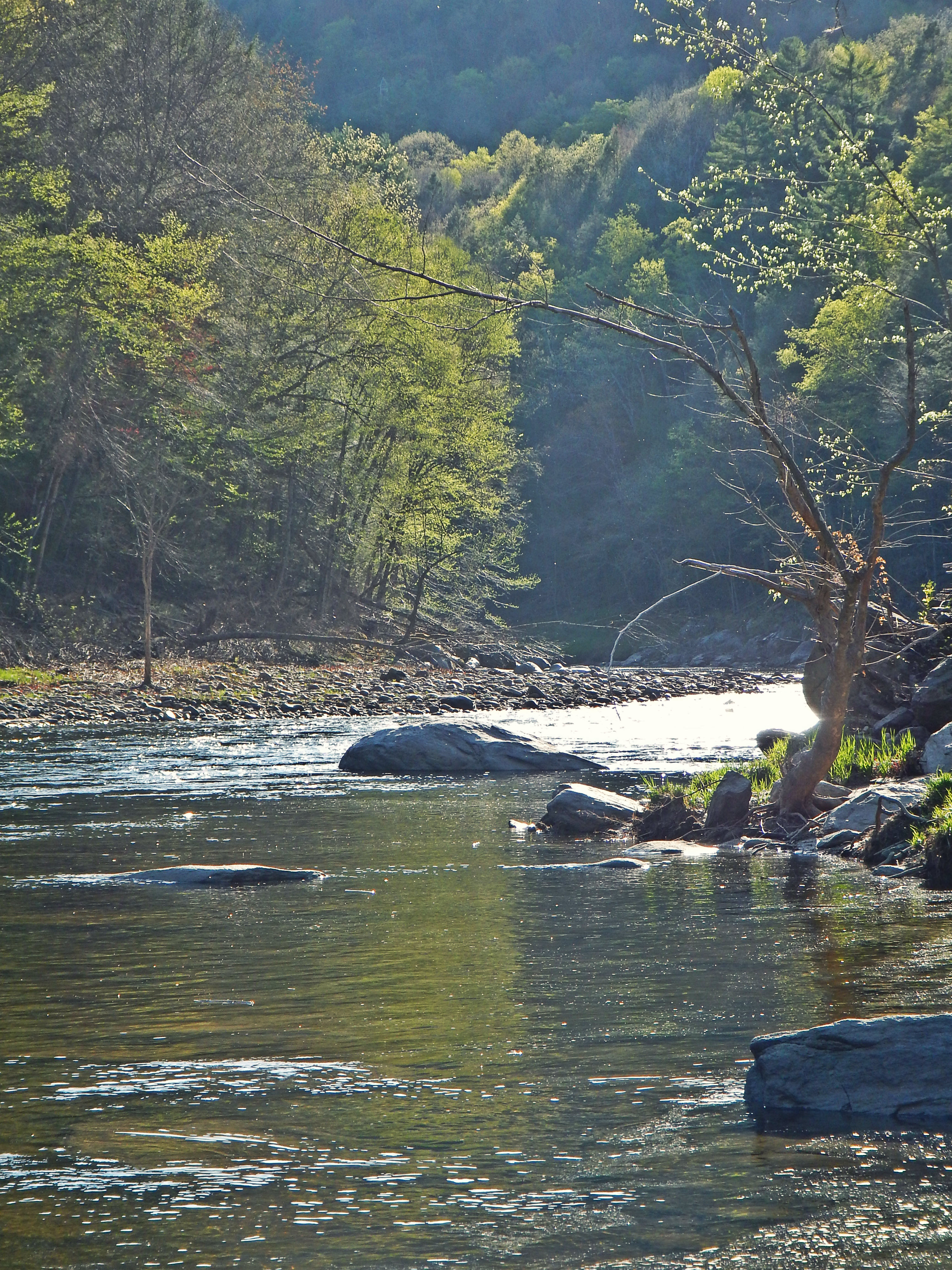 May on the deerfield river for Deerfield river fly fishing